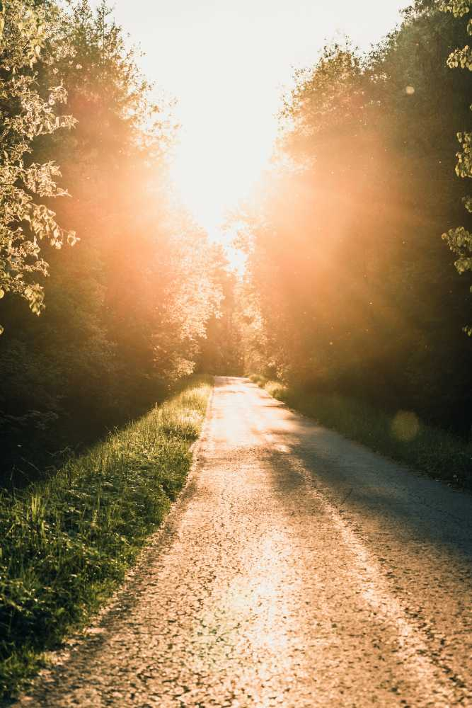 Chemin vers la lumière - La Parcours en Analyse Transactionnelle